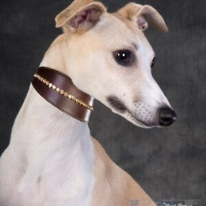 Tapered Single Row Large Crystal Collar - Made with SWAROVSKI® ELEMENTS