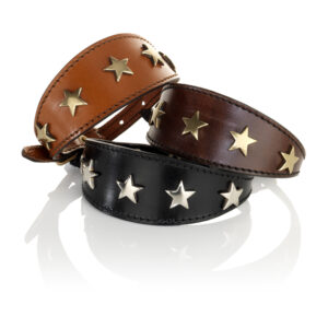 Tapered Small Star Collar